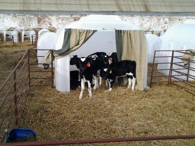 Фото эксплуатации домиков ПЛАСТО на сельскохозяйстенных предприятиях