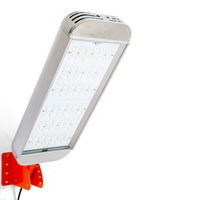 Светильник уличный светодиодный ДКУ-165